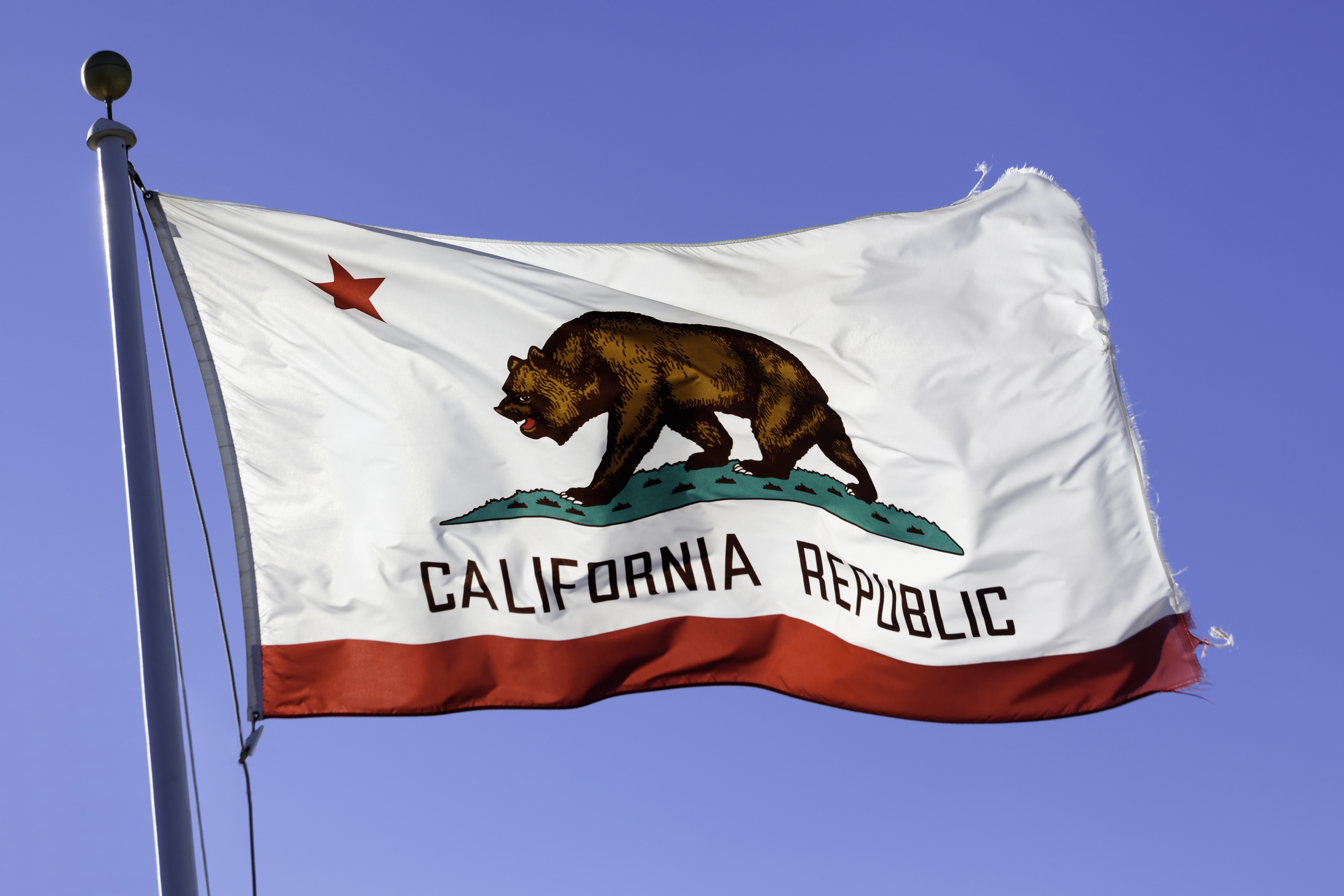 The flag of California blowing in the wind.