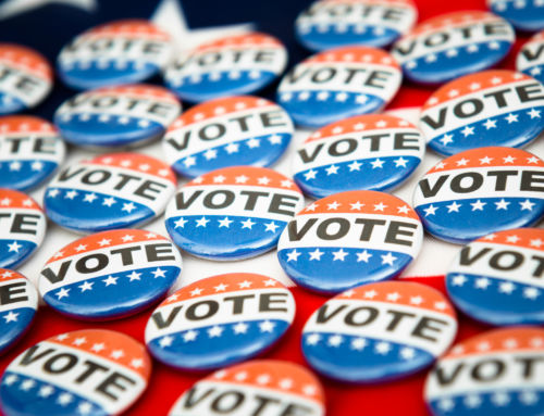 Congressional Corner: It's An Election Year (Just in Case You Happened to Forget)!